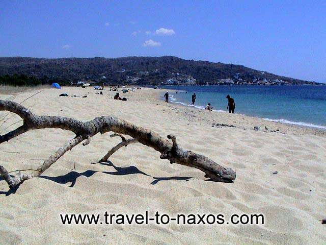 A view of Karades beach with the excelent imperial sand. NAXOS PHOTO GALLERY - KARADES