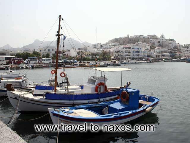 NAXOS PORT - Fishing boats in Naxos port