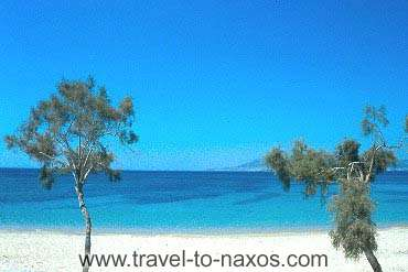PLAKA BEACH - Plaka beach lies next to Agia Anna beach.