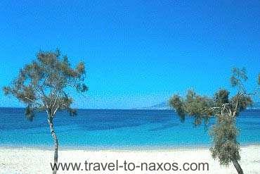 PLAKA BEACH - Plaka beach lies next to Agia Anna beach.