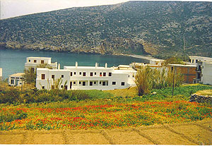 ADONIS  HOTELS IN  Apollonas Naxos Cyclades islands