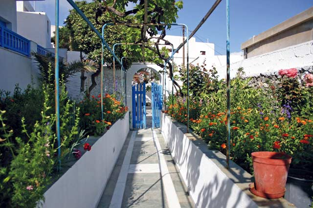The garden at the entrance of the hotel CLICK TO ENLARGE